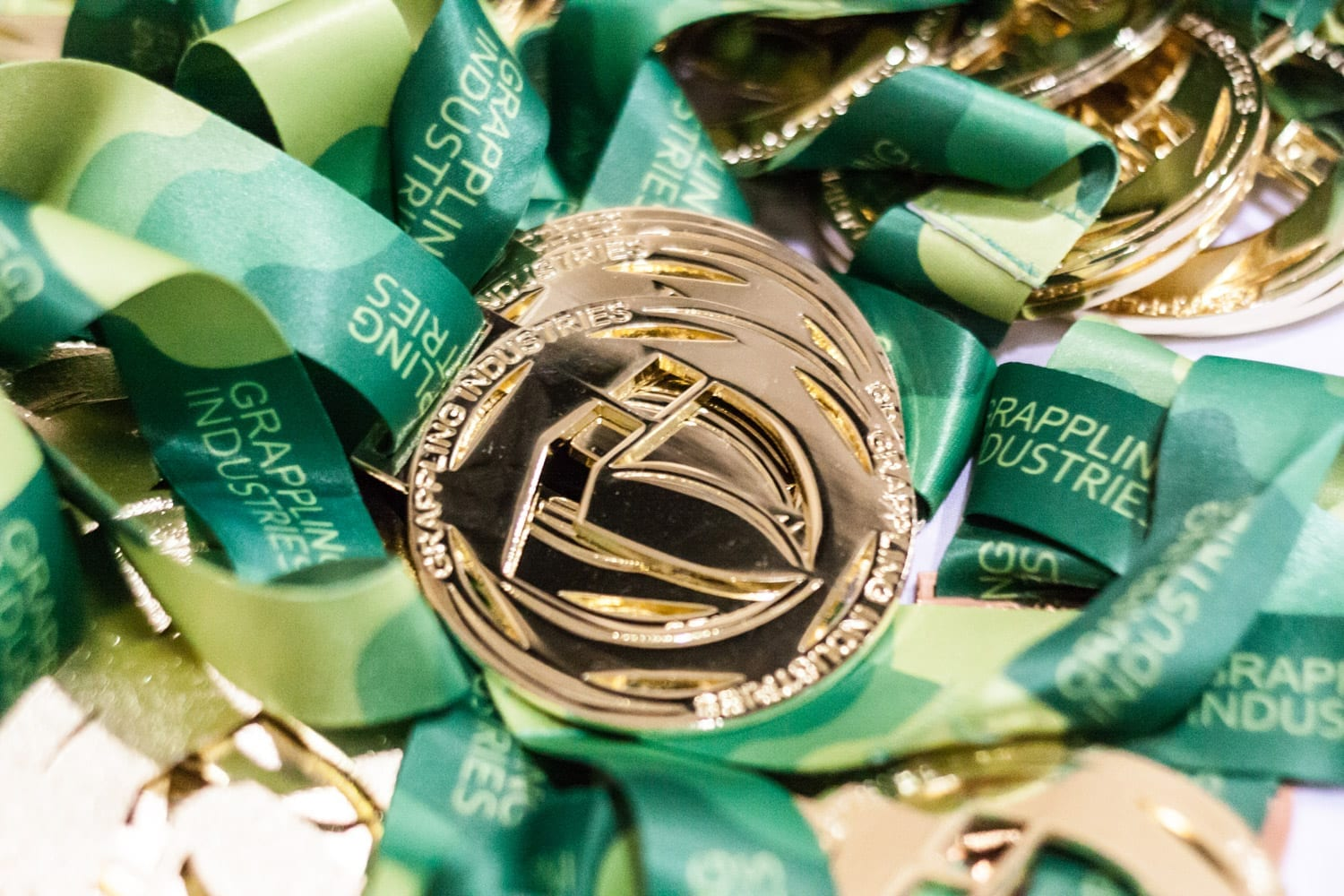 a photo of the grappling industries gold medal